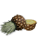 Pineapple top and bottom
